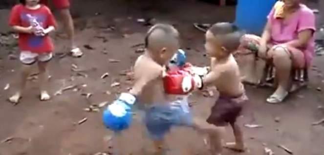 kidfight